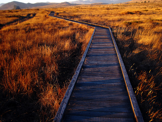 Path by angrylambie CC Flickr